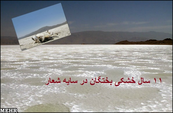 shiraz-4